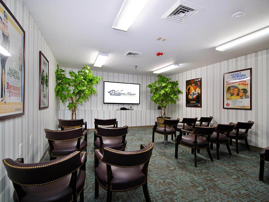 Westhaven Manor mini theater